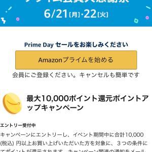 1000円以上買って1000円クーポン貰える!