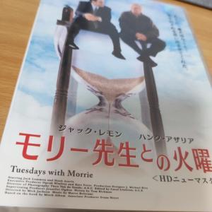 モリ―先生との火曜日