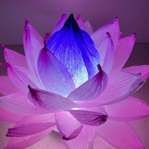 自宅で蓮の花を作ろう♪ハスワーク®開催します!【Zoom 8/23(月)】
