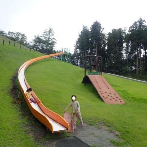 2020.7 神奈川県立つぶらの公園