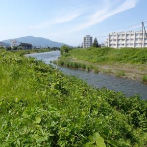 敦賀市内を流れる三川(黒河川・笙の川・木の芽川)を巡り河口へと