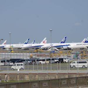各大手航空会社の減便・運休状況とこの先の見通しへのヒント