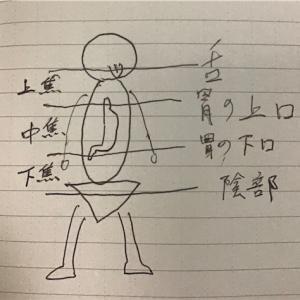 東洋医学スイング