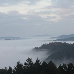 岡山県で雲海に浮かぶ備中松山城を見よう!駐車場の有無もご紹介