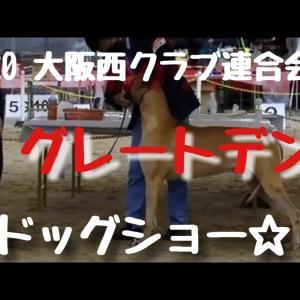 2020 大阪西クラブ連合会展☆