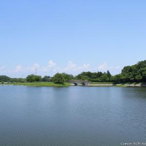 大沼親水公園