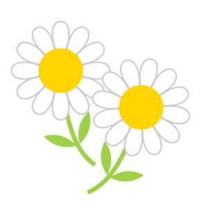 花のプロフィール