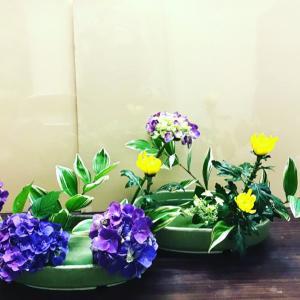 紫陽花でお稽古