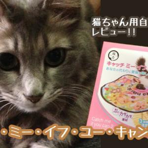 猫用自動おもちゃ[キャッチ・ミー・イフ・ユー・キャン2]レビュー