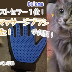 猫や犬のブラッシングに!手袋タイプのシリコンブラシ(Delamu)を長毛猫に使ってみた[おすすめレビュー]