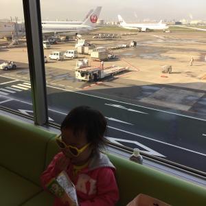 双子と子連れ沖縄旅行① 4歳