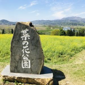 観光ランニングが楽しすぎた話【長野県飯山市~木島平村】