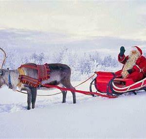(アイルランド)正式になりました。サンタは来ます! Santa is coming!