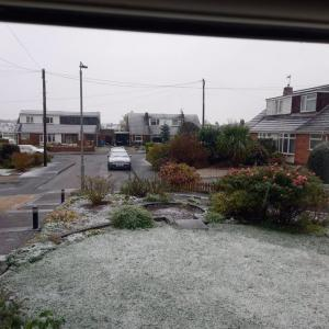 UK: first snow this year ❄️ 今年初の雪