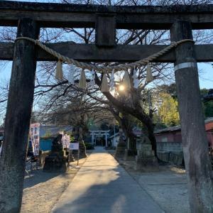 前玉神社と書いてさきたま神社