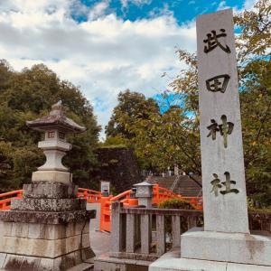 雷がゴロゴロ凄かった!「強力な勝運」のパワースポット!武田神社