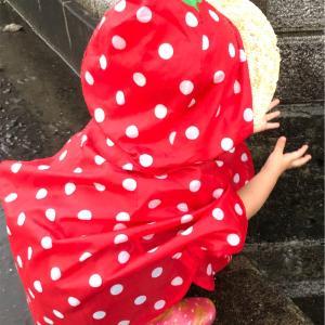 雨の日の楽しみを見つけました