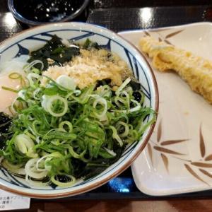 今日のお昼ご飯 丸亀製麺