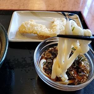 名古屋市昭和区『讃岐製麺 滝子通店』ざるうどん