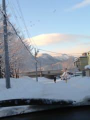 毎日雪。雪。雪。。。。。