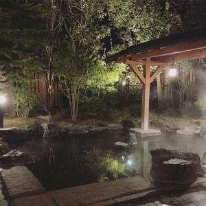 福島一の歴史ある温泉!飯坂温泉の魅力