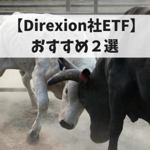 【Direxion社ETF】おすすめ2選!楽天証券キャンペーン中