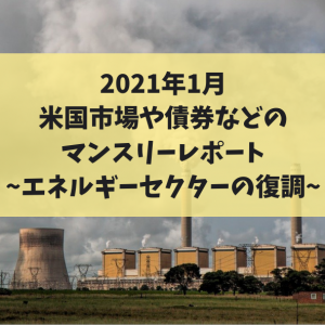 2021年1月米国市場や債券などのマンスリーレポート~エネルギーセクターの復調~