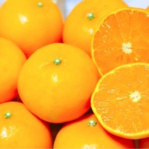 自己肯定感を高める香り〜オレンジスィート