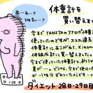 ダイエット 28・29日目