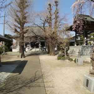 桜の名所「真言宗廣琳寺」