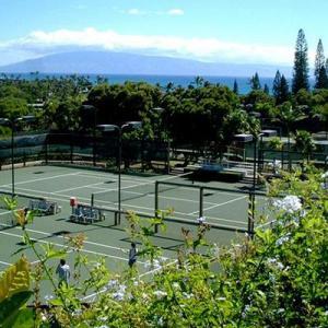 カパルア オープン テニス トーナメント