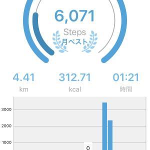 歩数計アプリMaipoで散歩記録を残して公開することに!