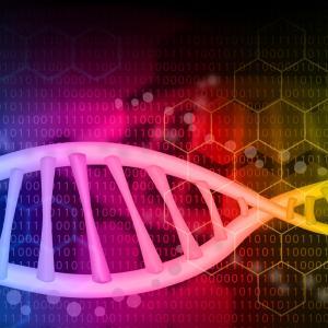 「ヒトゲノム」と努力