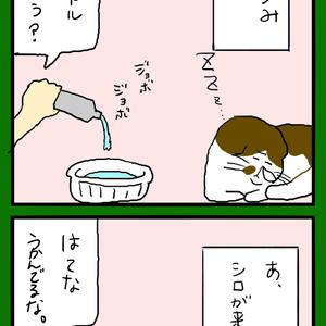 水への興味