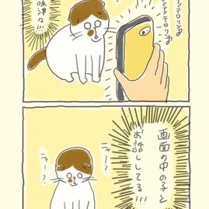 シロちゃん、スマホデビュー!???