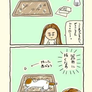 画鋲抜き職人シロ
