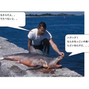 「秋田県のふぐ食中毒」から感じる身近な危害について