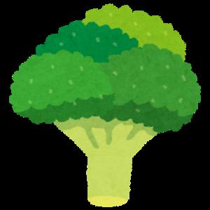 第105話 最強の野菜 ブロッコリー