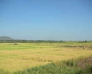 アジア開発銀行 カンボジアの地方上水道整備を支援