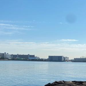 #舞洲大橋下 #鳴尾浜海釣り公園 #南甲子園浜 #スズキ・ハネ #エビ撒き