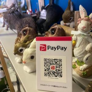 Paypayはじめました@庭楽育ささやまBASE