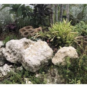 琉球石灰岩の使い方@庭楽育ささやまBASE