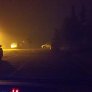 霧の朝ですね