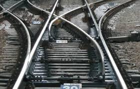 線路にカメ、JR運転見合わせ 奈良、切り替えポイントに挟まる