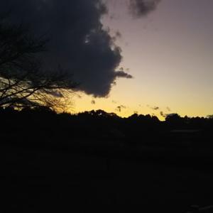 もう、日没ですね🍀