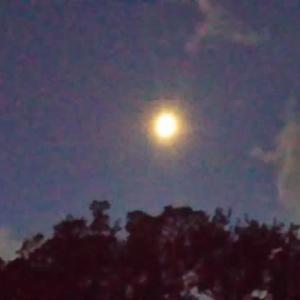 月が昇ります