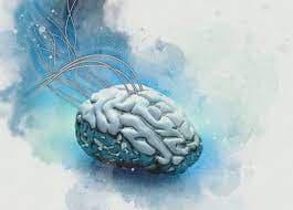 ヒトの「脳をコピペ」できる半導体チップの研究を発表>サムスン