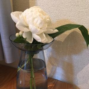 芍薬様がみてる!?お部屋に切り花を飾ったら、片付けスイッチがオンになる