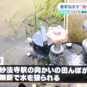 【悲報】撮り鉄さん、撮影のために人んちの田んぼに勝手に水を張るwww「さすがに稲生える」「水道代だけでもシャレにならんやろこれ?」