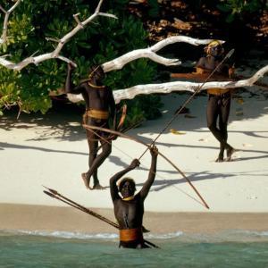 北センチネル島とかいう謎の部族が暮らす未開の島『危険すぎて立ち入り禁止』『上陸した宣教師は殺害』『独自の言語が発達してて解読不能』